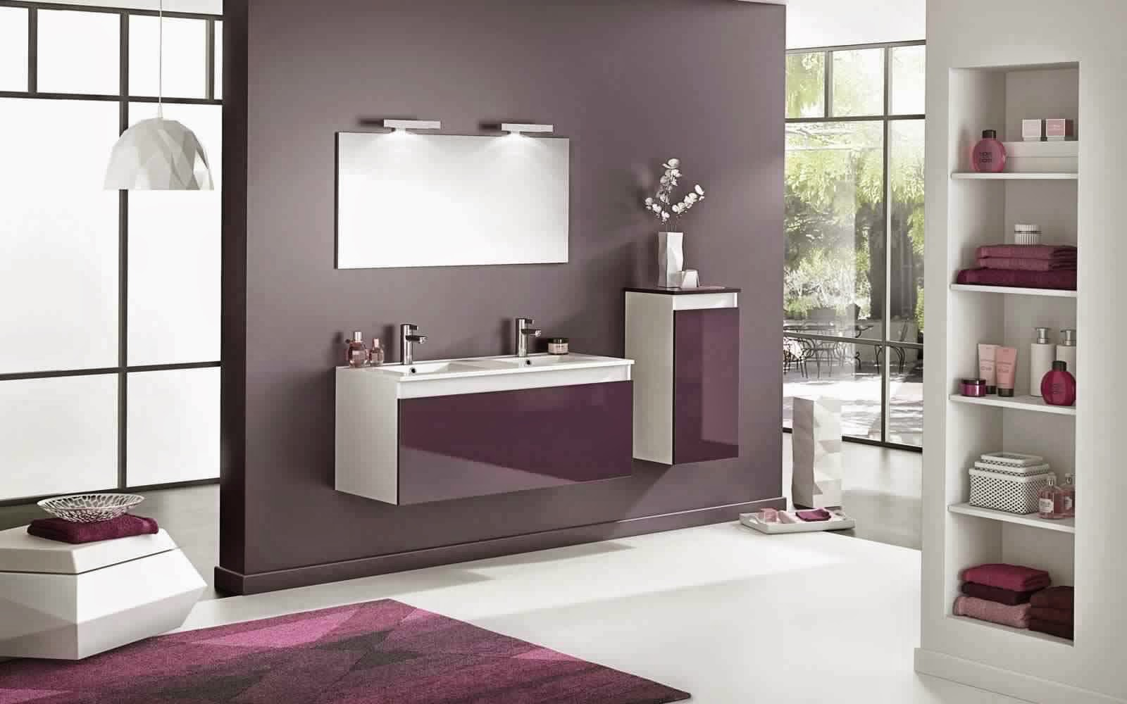 salle de bain vitr am nagement installation lionel fouassier. Black Bedroom Furniture Sets. Home Design Ideas